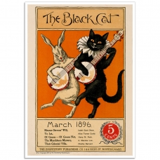 Book Cover Poster - The Black Cat